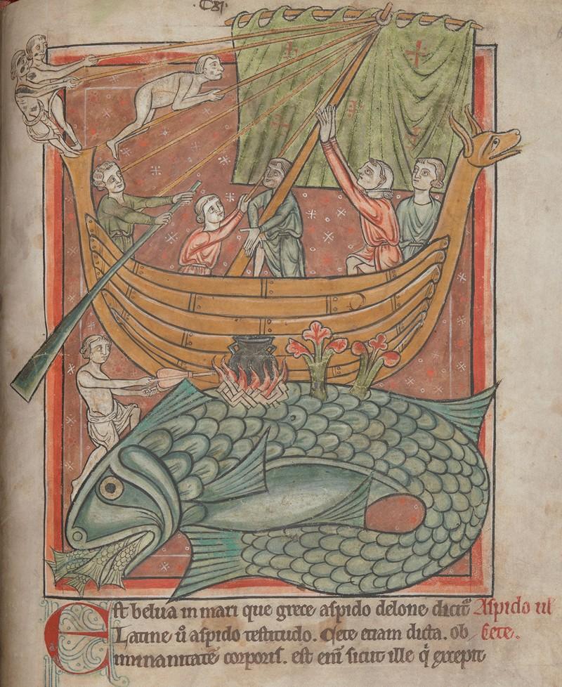 Свет из глубины веков: 800 «иллюминированных» манускриптов Средневековья в свободном доступе 29