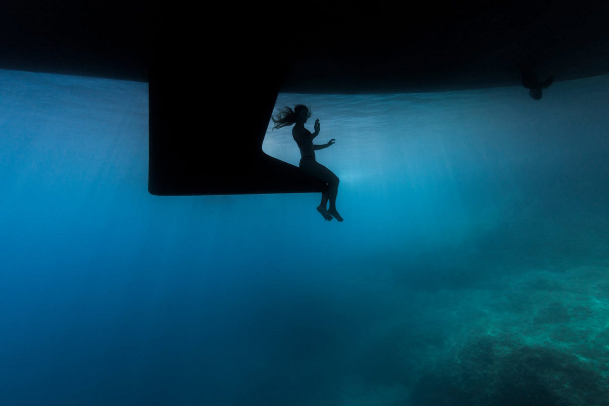 """The life of the sea depths in the works of the winners of the contest """"Underwater Photographer of the Year - 2019"""" 18"""