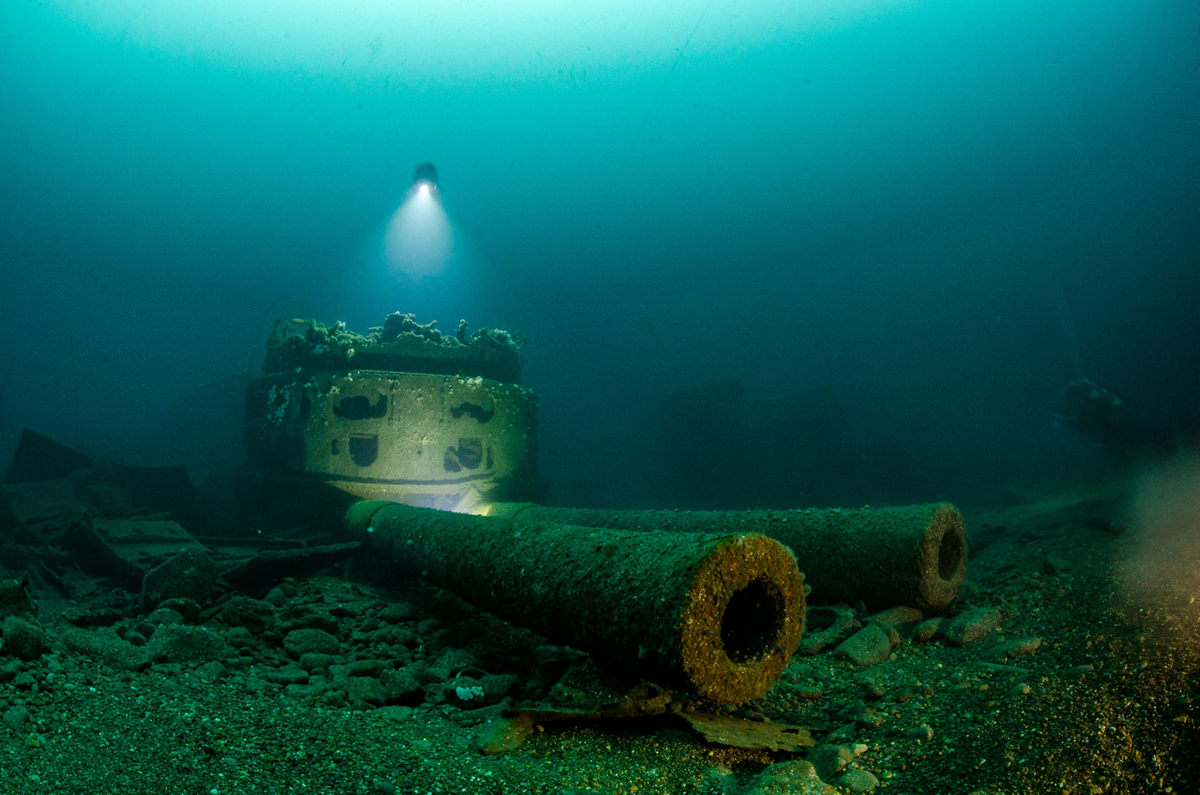 """The life of the sea depths in the works of the winners of the contest """"Underwater Photographer of the Year - 2019"""" 6"""