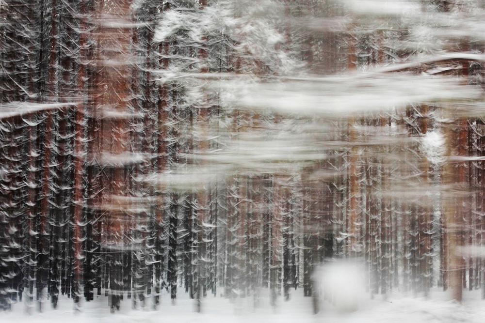 Мария Плотникова: «Уличная фотография – это как джаз в музыке» 49