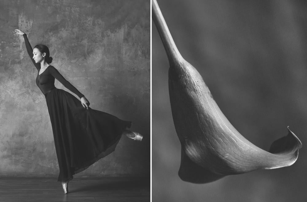 «Балерина и цветы» – серия о сходстве двух изяществ  10