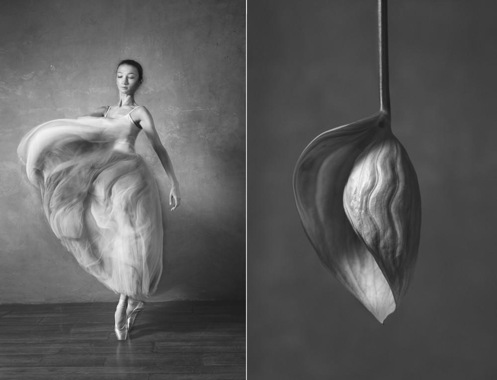 «Балерина и цветы» – серия о сходстве двух изяществ  11