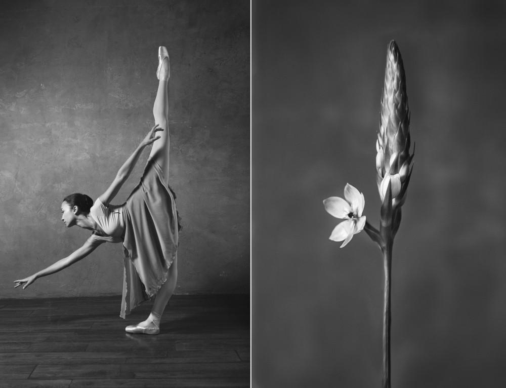 «Балерина и цветы» – серия о сходстве двух изяществ  13