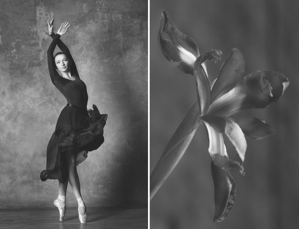 «Балерина и цветы» – серия о сходстве двух изяществ  2
