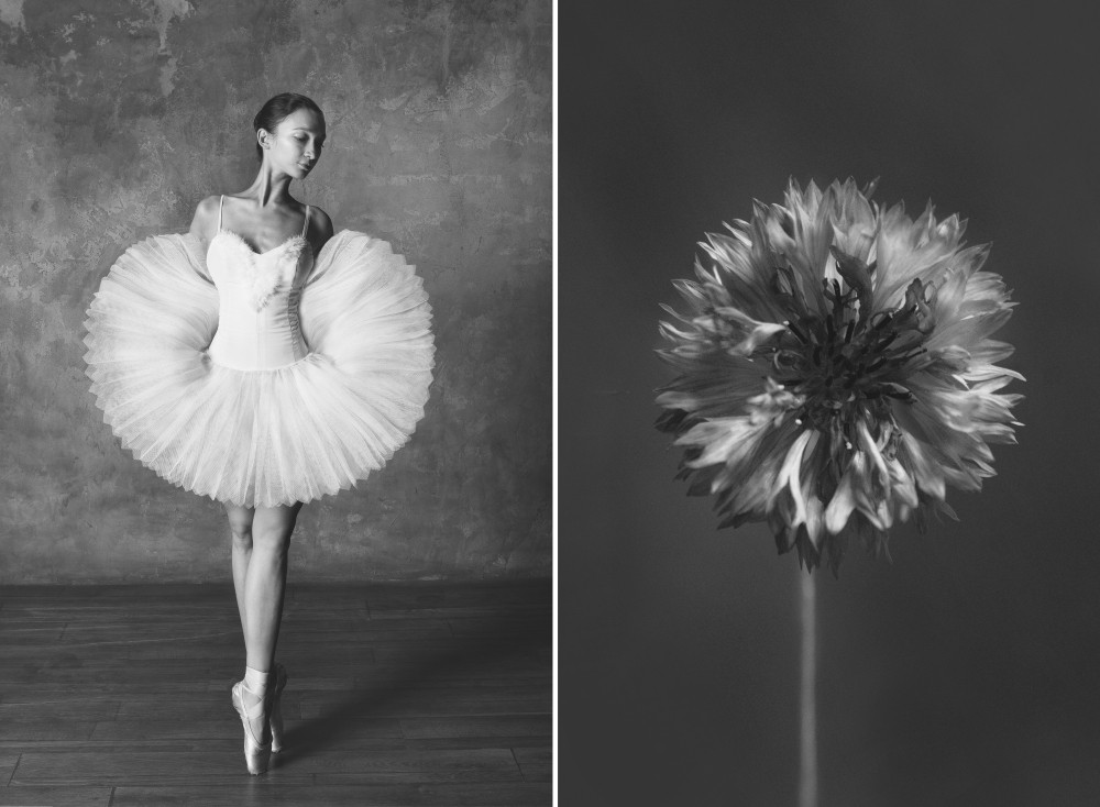 «Балерина и цветы» – серия о сходстве двух изяществ  3