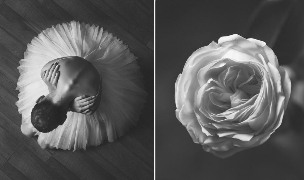 «Балерина и цветы» – серия о сходстве двух изяществ  7