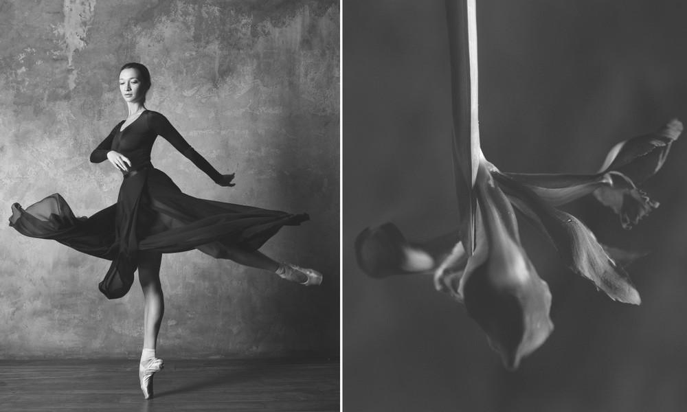«Балерина и цветы» – серия о сходстве двух изяществ  8