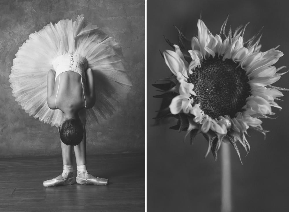 «Балерина и цветы» – серия о сходстве двух изяществ  9