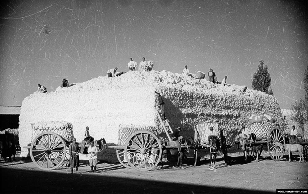 Классика советской довоенной фотографии 1900 1940 penson 1000 6