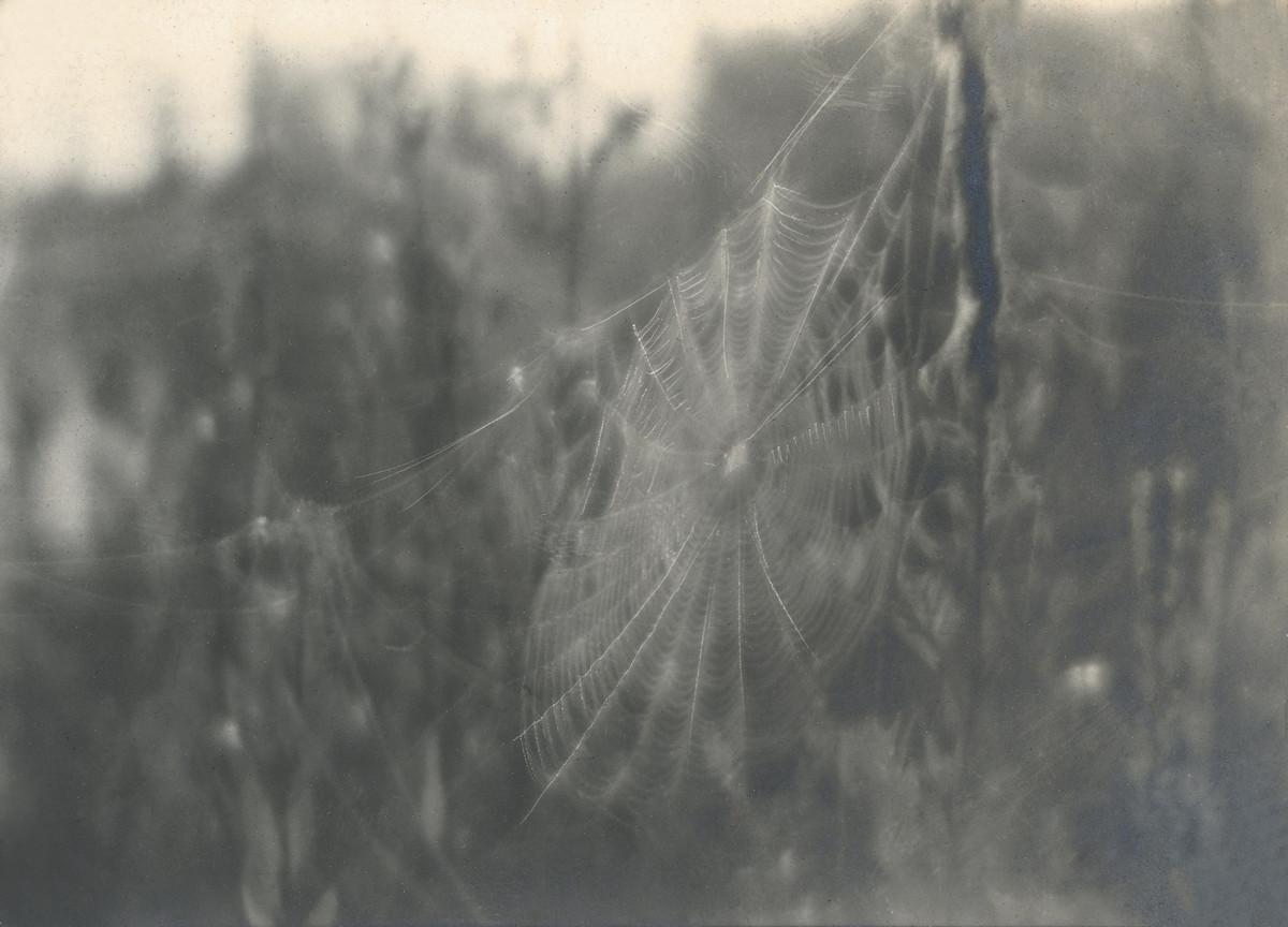 Классика советской довоенной фотографии 1900 1940 ulitin 1200 6