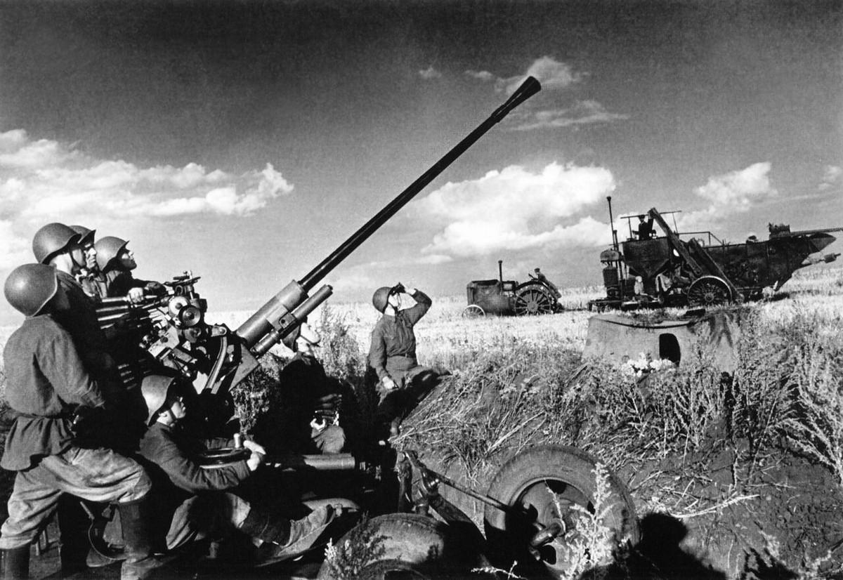 фронт и тыл Великой Отечественной на снимках советских военных фотографов baltermanz 1200 3