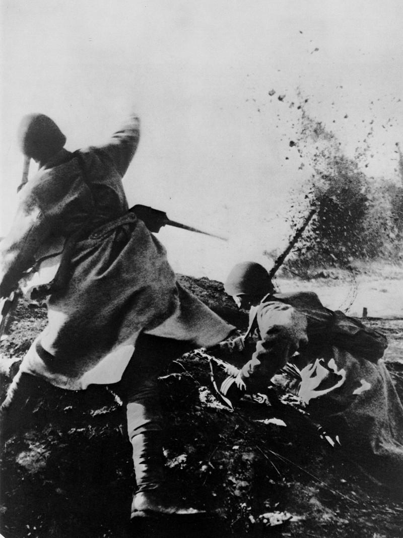 фронт и тыл Великой Отечественной на снимках советских военных фотографов baltermanz 800