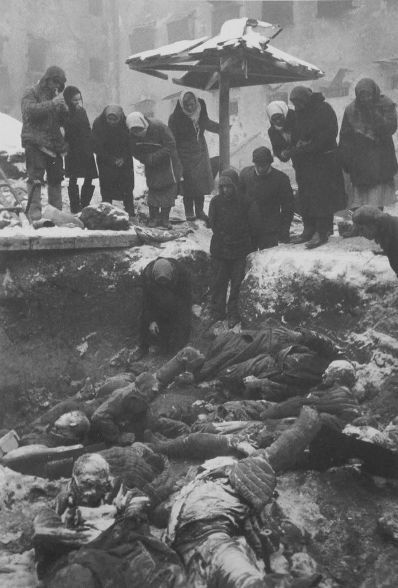 фронт и тыл Великой Отечественной на снимках советских военных фотографов evzerihin 800 2