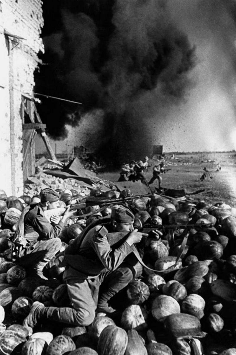 фронт и тыл Великой Отечественной на снимках советских военных фотографов fridlyand 800 3