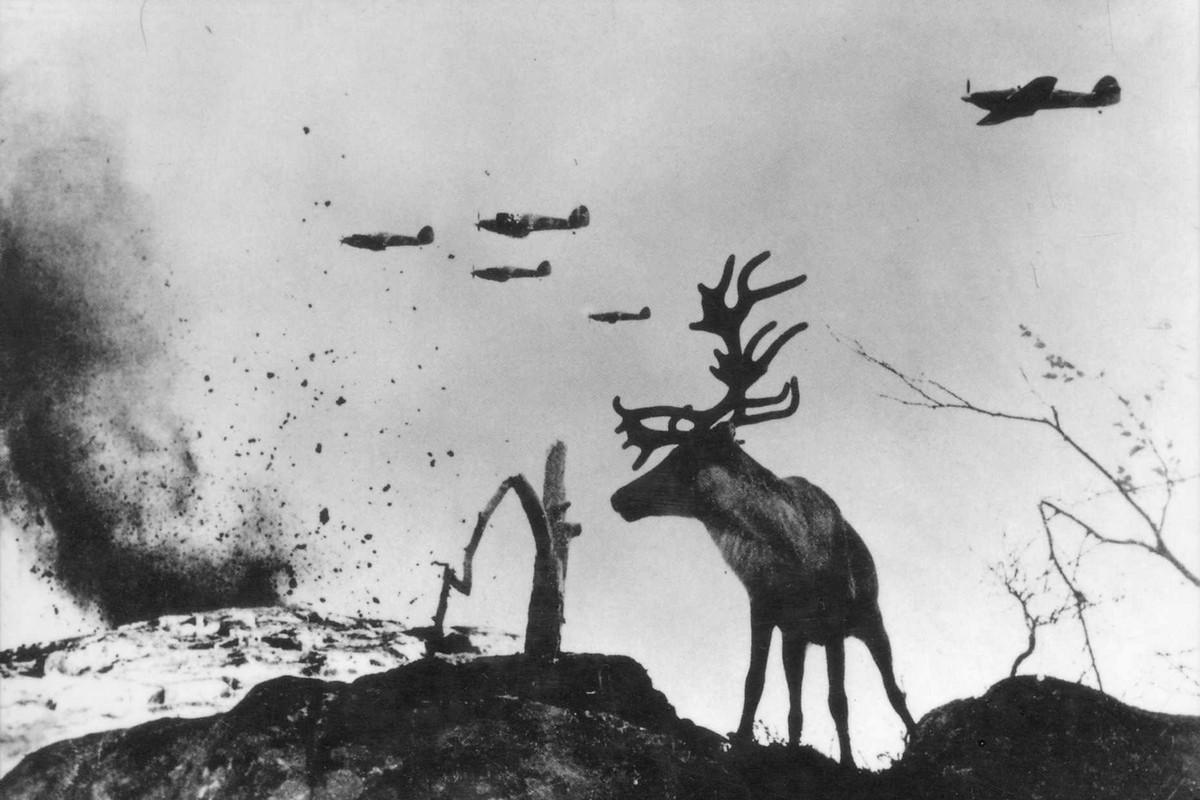 фронт и тыл Великой Отечественной на снимках советских военных фотографов haldey 1200 3