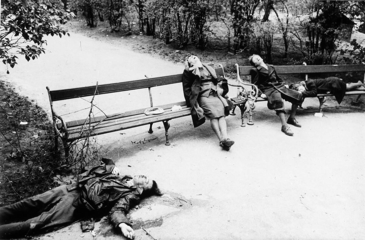 фронт и тыл Великой Отечественной на снимках советских военных фотографов haldey 1200 7