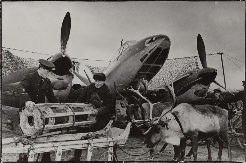фронт и тыл Великой Отечественной на снимках советских военных фотографов haldey 800 2