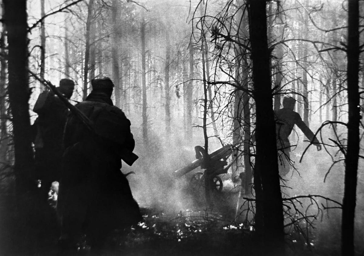 фронт и тыл Великой Отечественной на снимках советских военных фотографов lipskerov 1200