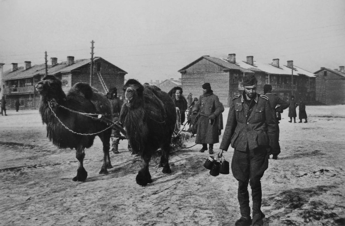 фронт и тыл Великой Отечественной на снимках советских военных фотографов lipskerov 1200 3