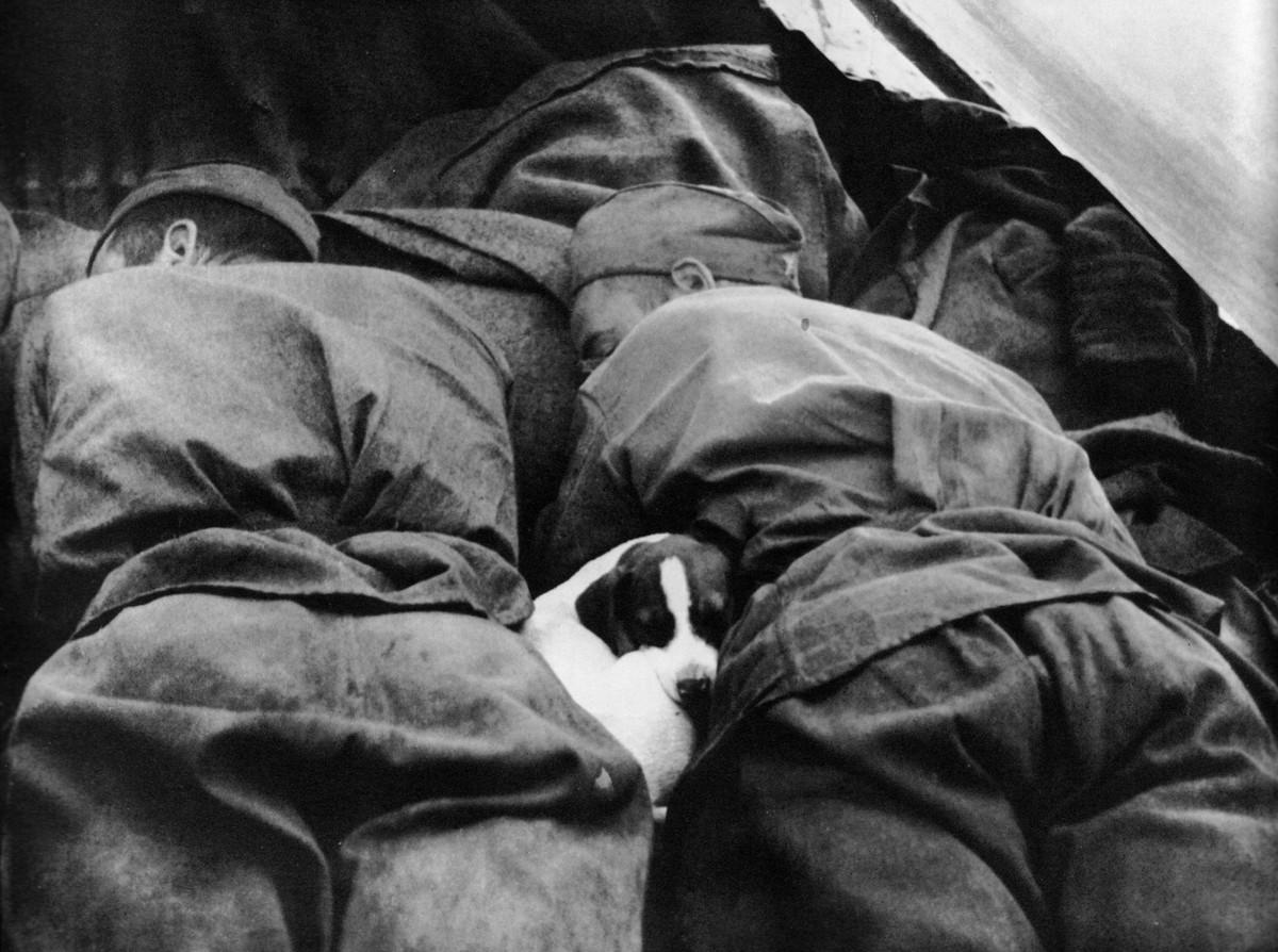 фронт и тыл Великой Отечественной на снимках советских военных фотографов lipskerov 1200 4