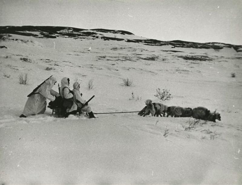 фронт и тыл Великой Отечественной на снимках советских военных фотографов shimanskiy 800 5