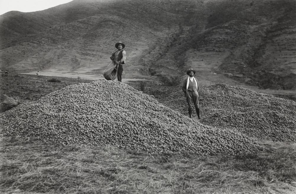 Первопроходец перуанской фотографии – индеец Мартин Чамби  16
