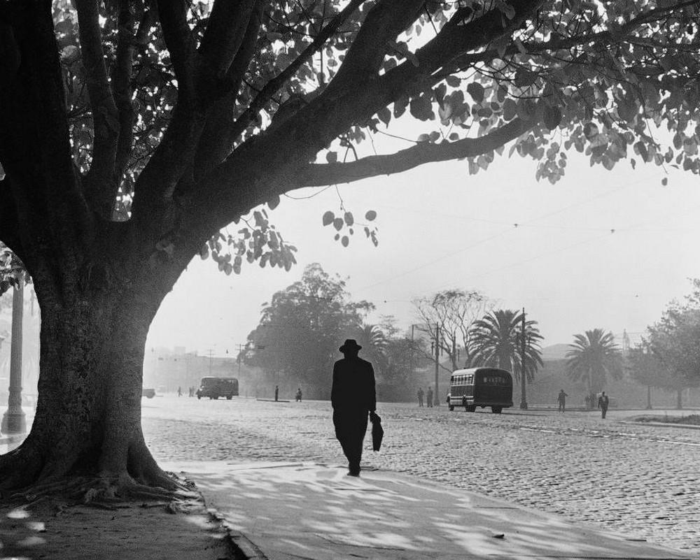 Первопроходец перуанской фотографии – индеец Мартин Чамби  32