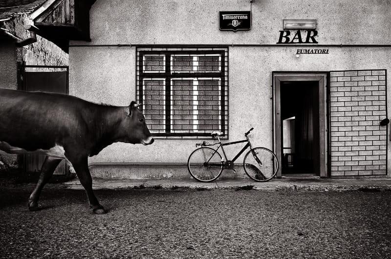 Свет, тени и силуэты: магия чёрно-белой уличной фотографии Гая Коэна 24