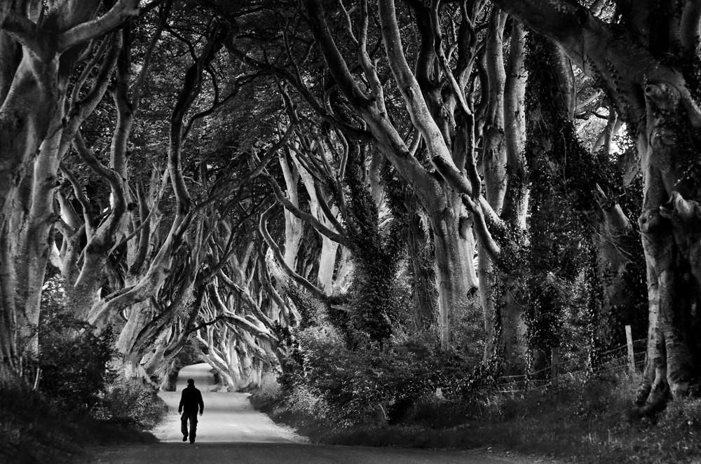 Свет, тени и силуэты: магия чёрно-белой уличной фотографии Гая Коэна 33 3