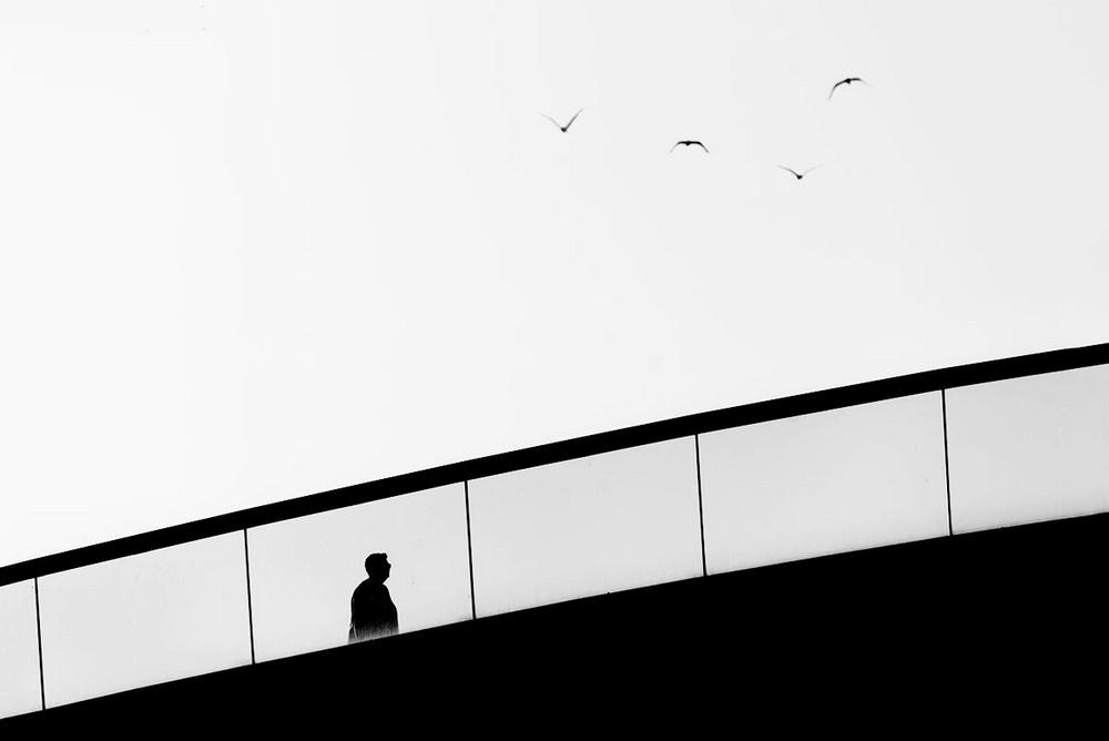 Свет, тени и силуэты: магия чёрно-белой уличной фотографии Гая Коэна 43