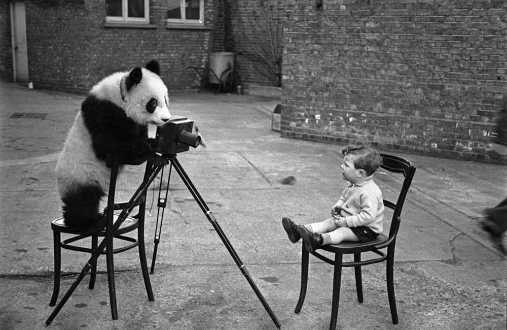 Эпохальный фотограф Берт Харди 54