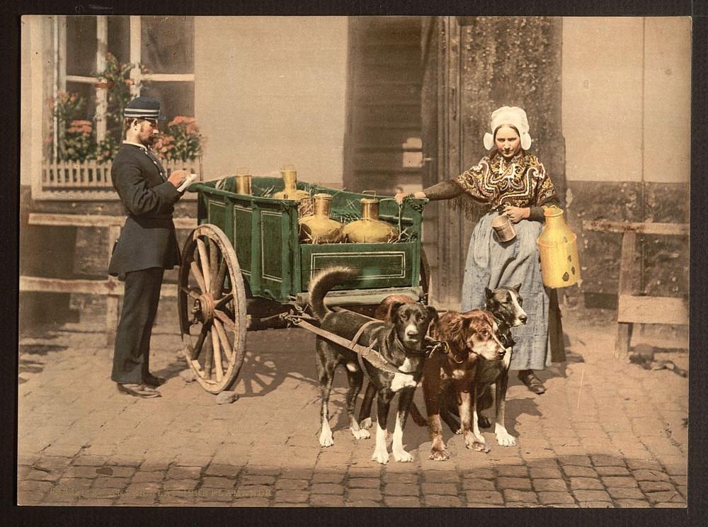 6000 великолепных фотохромных открыток Европы, Ближнего Востока и Северной Америки на рубеже XIX–ХХ вв 32