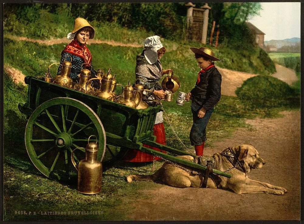 6000 великолепных фотохромных открыток Европы, Ближнего Востока и Северной Америки на рубеже XIX–ХХ вв 41