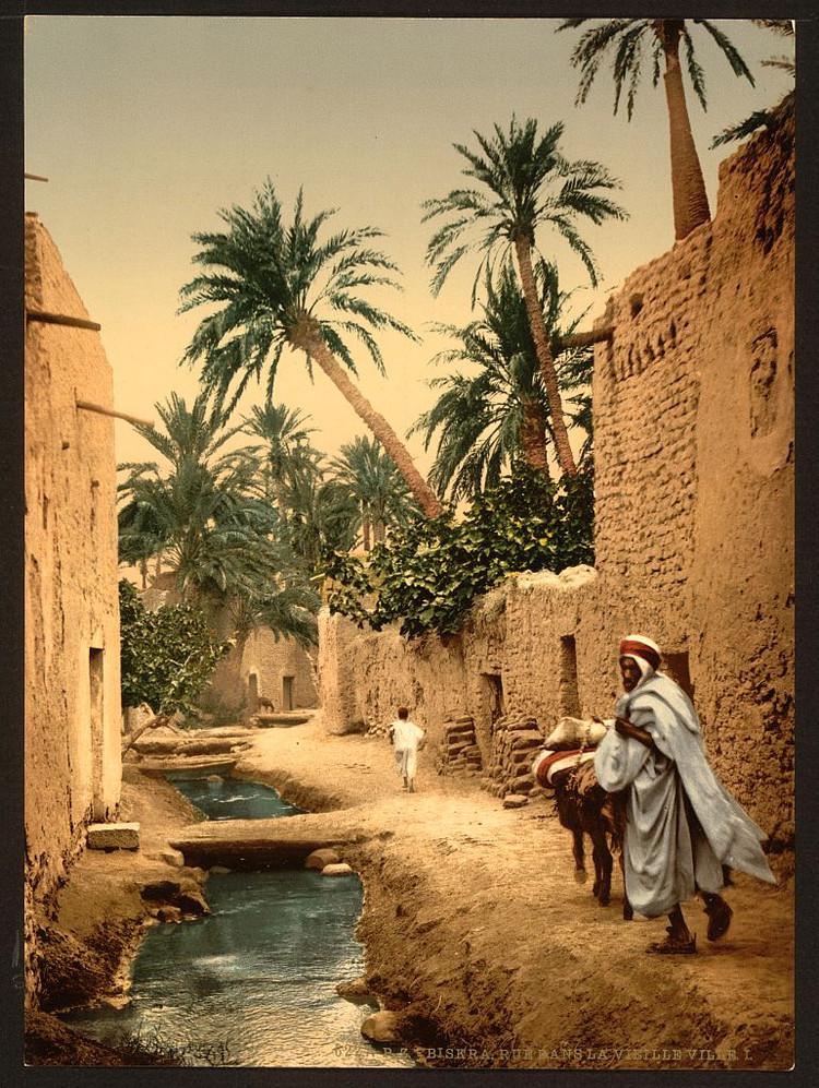 6000 великолепных фотохромных открыток Европы, Ближнего Востока и Северной Америки на рубеже XIX–ХХ вв 6