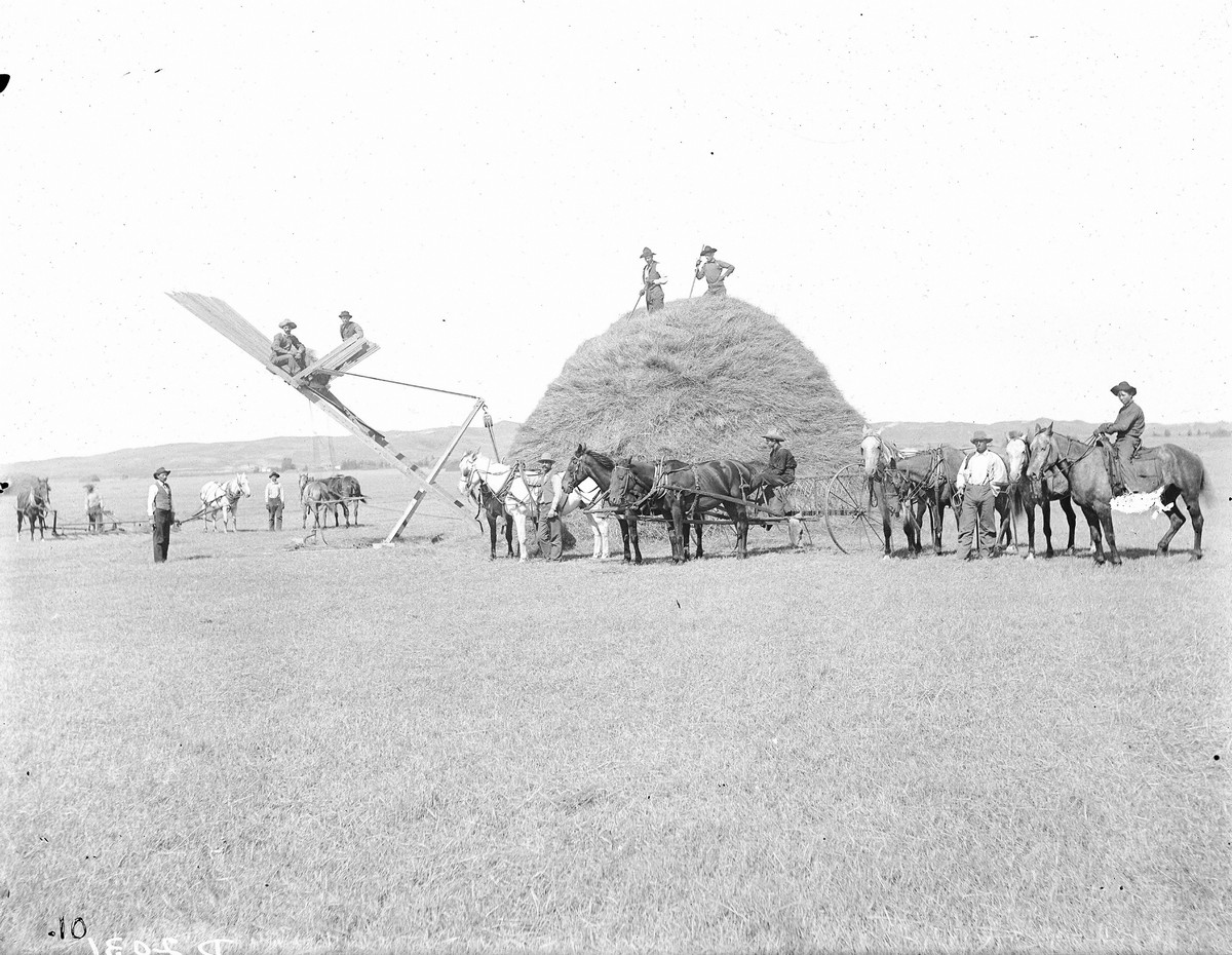 Как поднималась американская целина. Архивные фотографии пионеров Великих равнин конца 19-го века 15