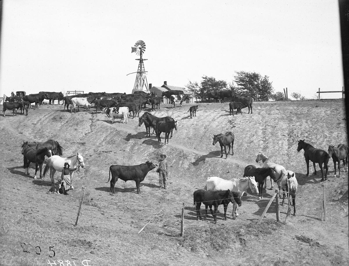 Как поднималась американская целина. Архивные фотографии пионеров Великих равнин конца 19-го века 9