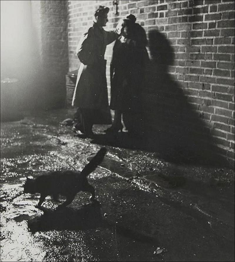 Британский фотожурналист Терстон Хопкинс 57