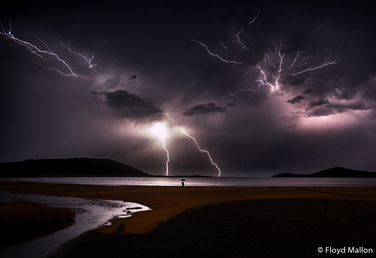 Победители фотоконкурса Australian Geographic Nature Photographer of the Year 2019 20