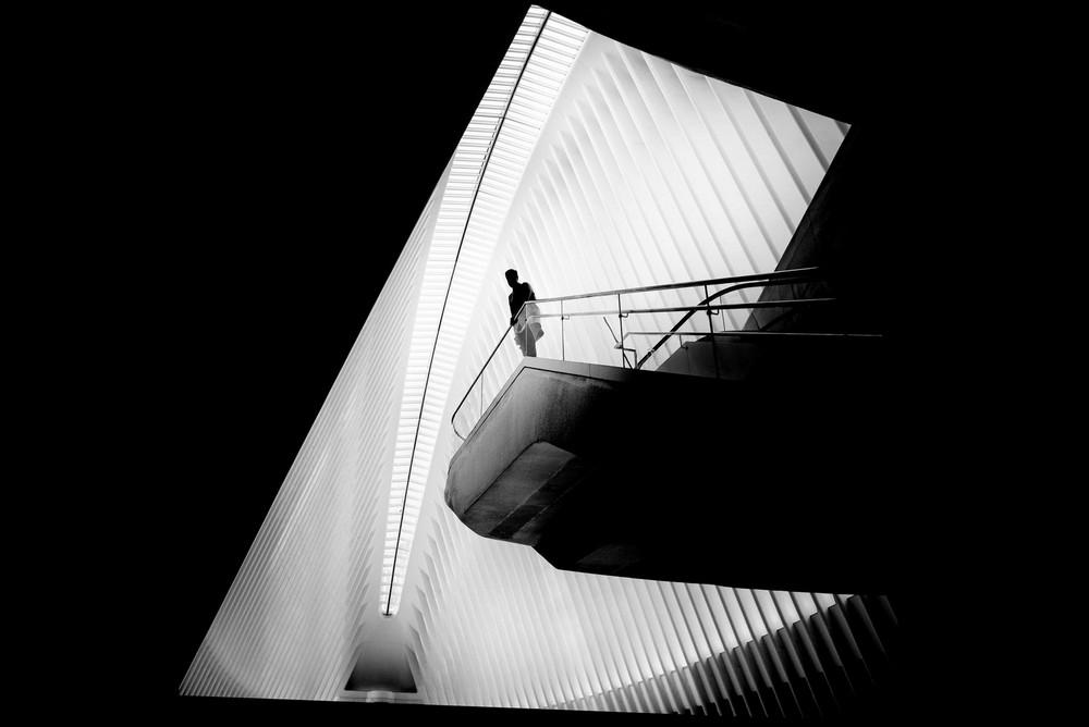 «Метрополис», «Голуби» и «Манхэттен» городского фотографа Алана Шаллера 13