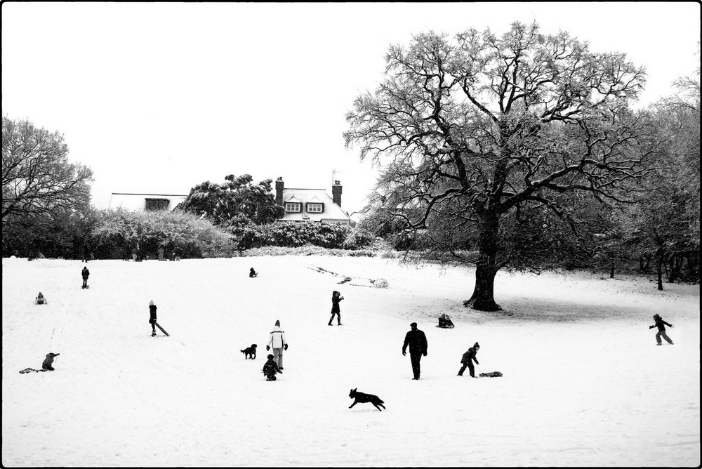 «Метрополис», «Голуби» и «Манхэттен» городского фотографа Алана Шаллера 53