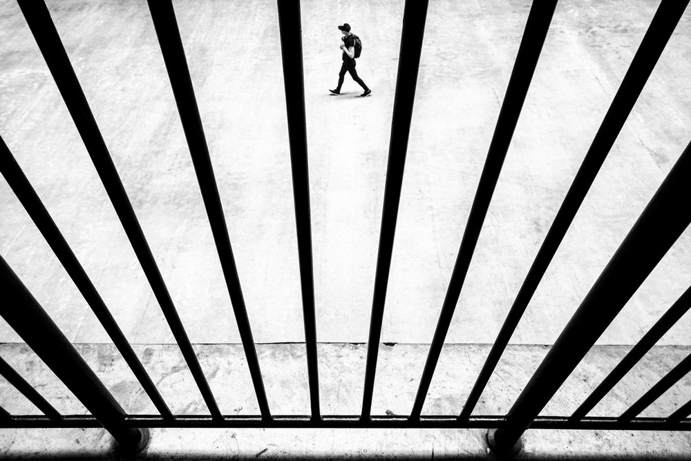«Метрополис», «Голуби» и «Манхэттен» городского фотографа Алана Шаллера 58