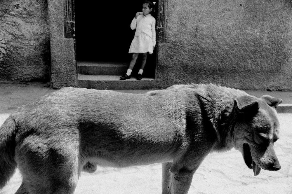 Серхио Ларраин: «Фотографирование – это прогулка в одиночку по вселенной» 28