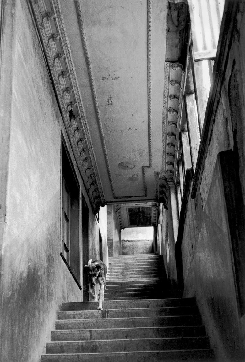 Серхио Ларраин: «Фотографирование – это прогулка в одиночку по вселенной» 30