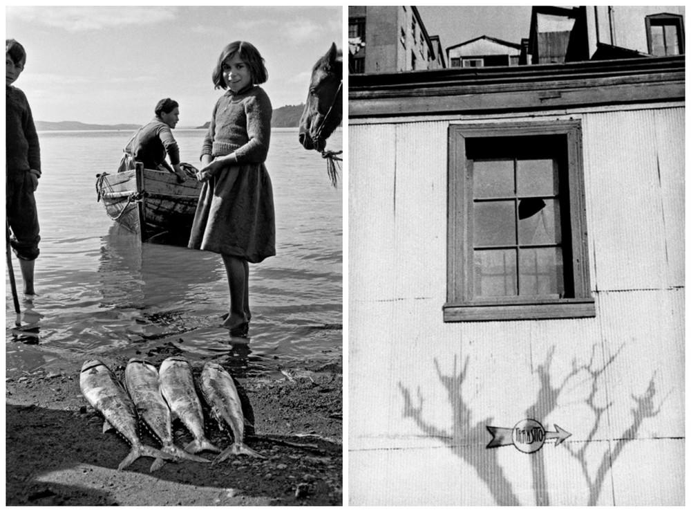Серхио Ларраин: «Фотографирование – это прогулка в одиночку по вселенной» 42