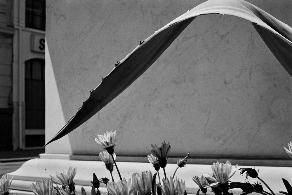 Серхио Ларраин: «Фотографирование – это прогулка в одиночку по вселенной» 49