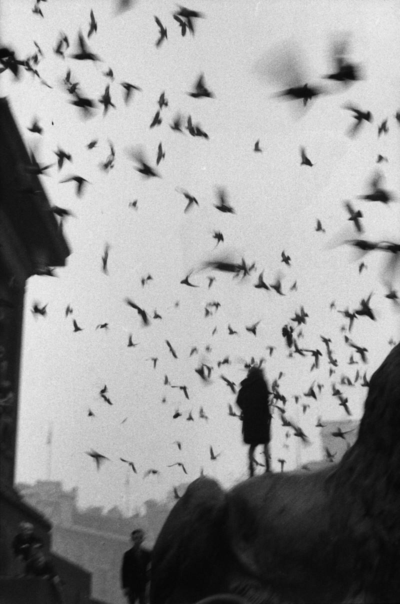 Серхио Ларраин: «Фотографирование – это прогулка в одиночку по вселенной» 5