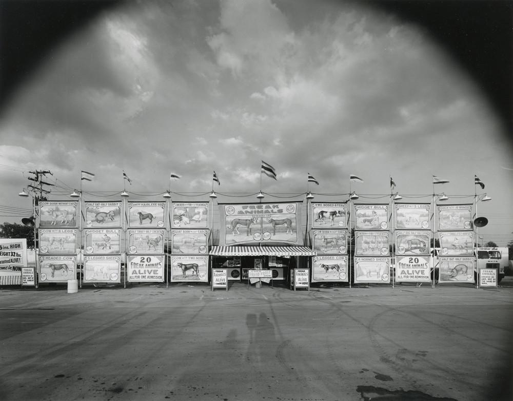 Американская история ужасов: реальные бродячие цирки в документальном фотопроекте Рэндала Левенсона 1971-81гг 3