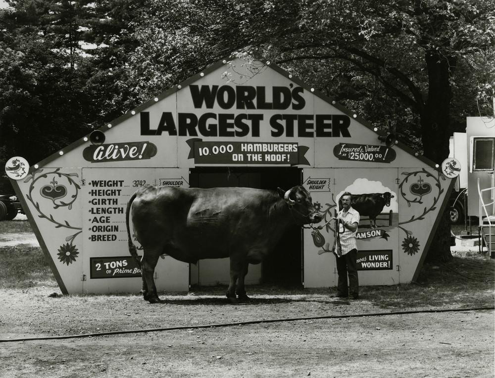 Американская история ужасов: реальные бродячие цирки в документальном фотопроекте Рэндала Левенсона 1971-81гг 4