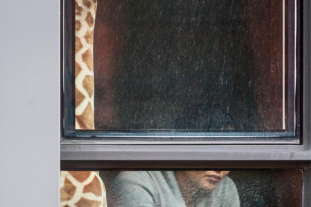 «Соседи» фотопроект Арне Свенсона 21