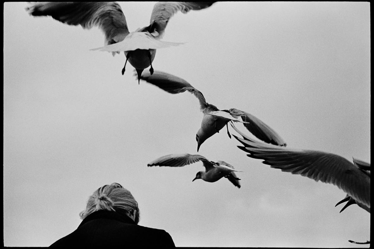 Сирил Дрюар: «Мне нравится, когда кто-то смотрит на мои фотографии и вздыхает» 14